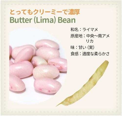 978_Beans_Butter-Bean