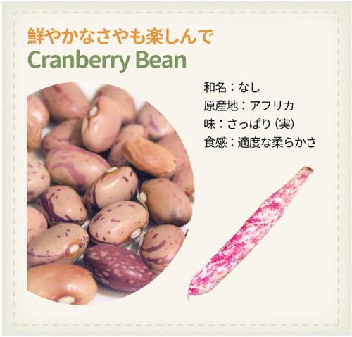 978_Beans_Cranberry-Bean