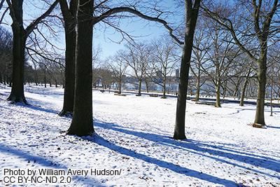 1001-Winter-Fun_4-3