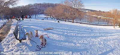 1001-Winter-Fun_4_1